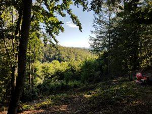 Jagdparcours Dornsberg - Die Stände in 360°